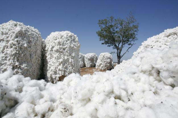 Turkish duty on US cotton to hurt its own textile exporters: Association